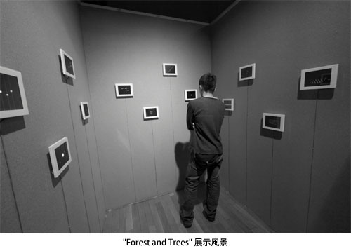 """Forest and Trees"" 展示風景"